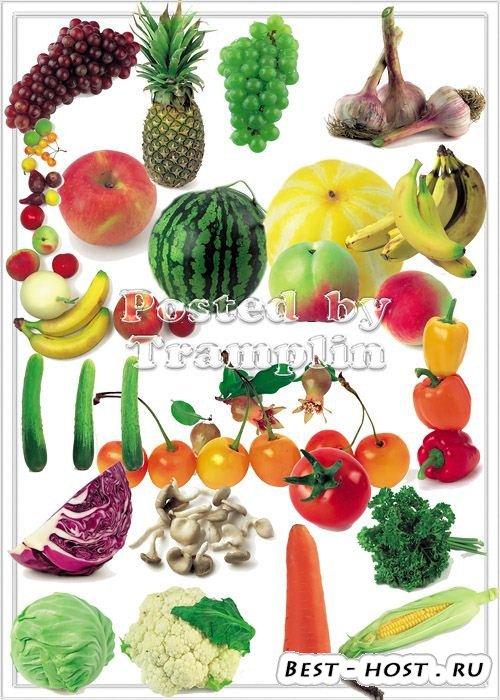 Клипарт – Фрукты и овощи на белом фоне