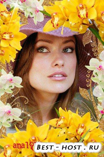 Рамка для фотошопа - Праздник орхидей