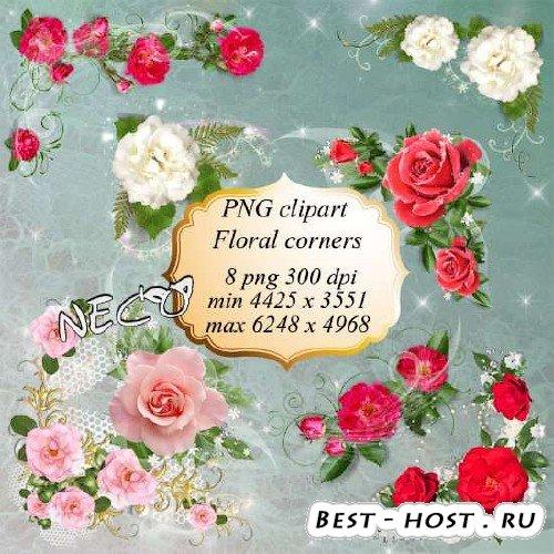 PNG клипарт - Цветочные уголки с белыми, розовыми и красными розами