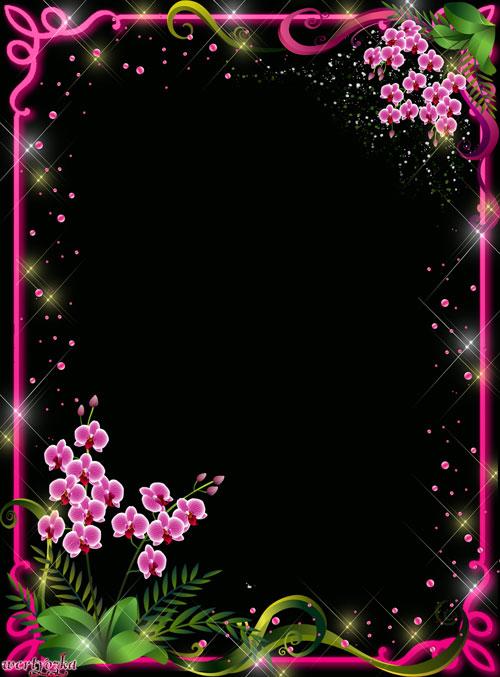Цветочная рамка для фото - Дивные орхидеи
