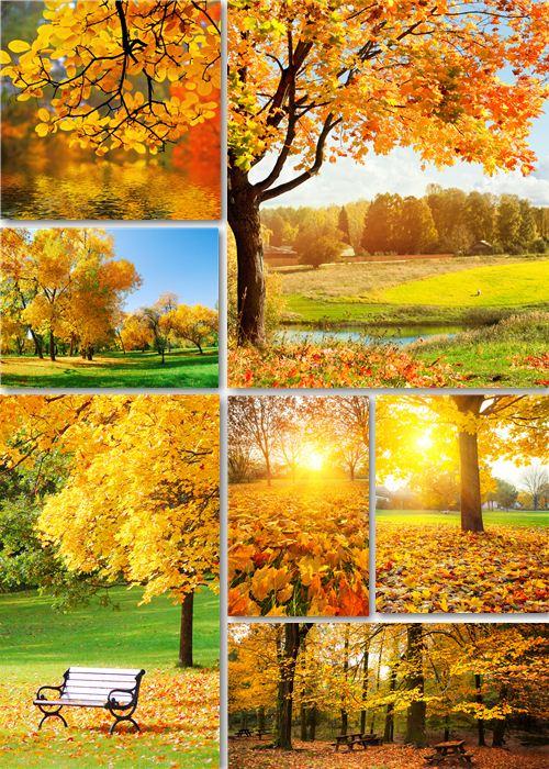 Клипарт - Осенняя пора, очей очарованье!