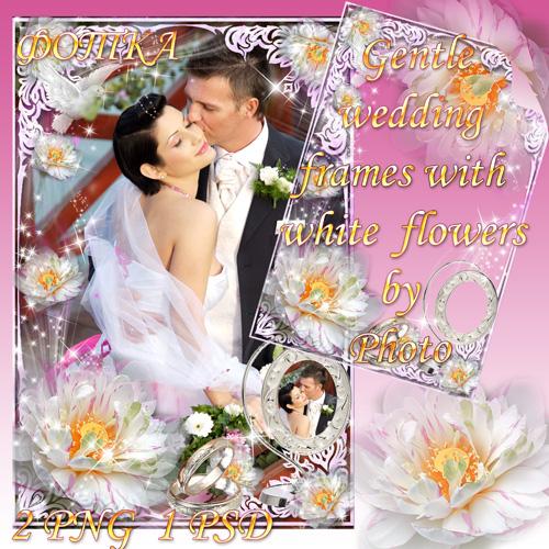 Нежные свадебные рамочки с белыми цветами