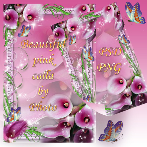 Цветочная рамка - Красивые розовые каллы