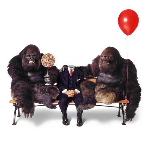 Шаблон psd мужской - отдых с гориллами