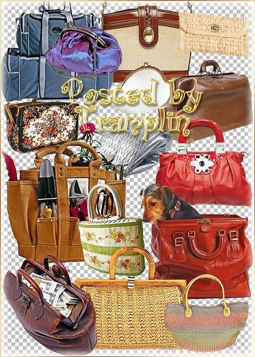 Клипарт – Сумки, кошельки, портфели, рюкзаки