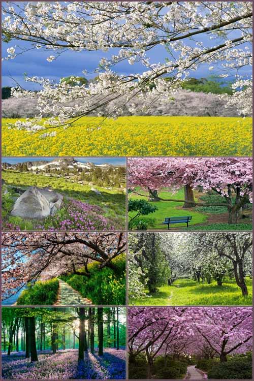 Обои - Долгожданная весна