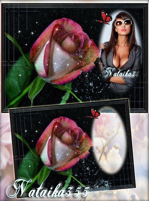 Рамка для фото - Хрусталь росы на розу капал