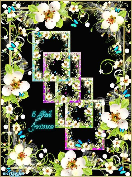 Рамка для фотошопа - Весенние цветы