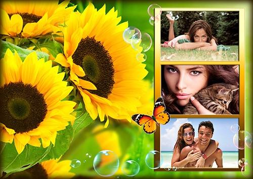 Фоторамка Летняя с бабочками 2