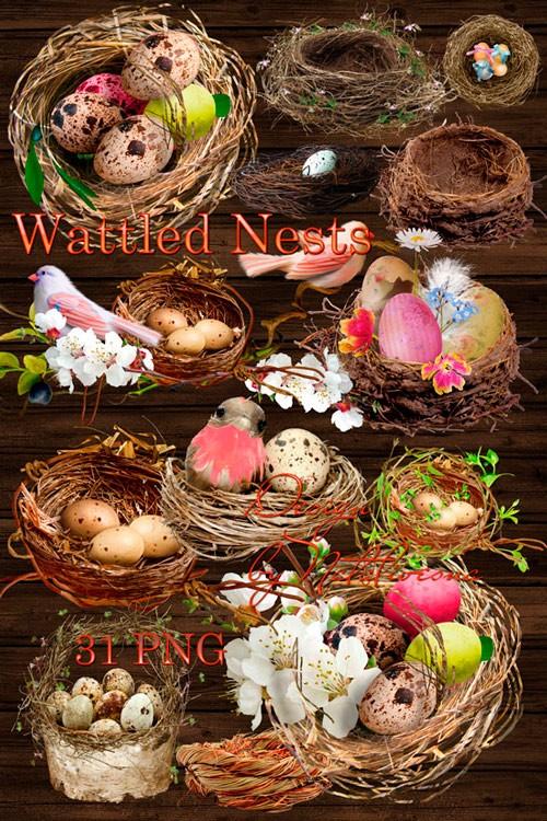 Клипарты в PNG  к празднику – Плетеные гнезда