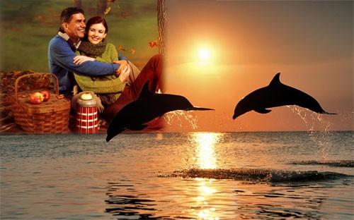 Рамка для фотографии - Море, дельфины, закат