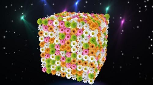 Футаж c альфаканалом - Цветочный подарок