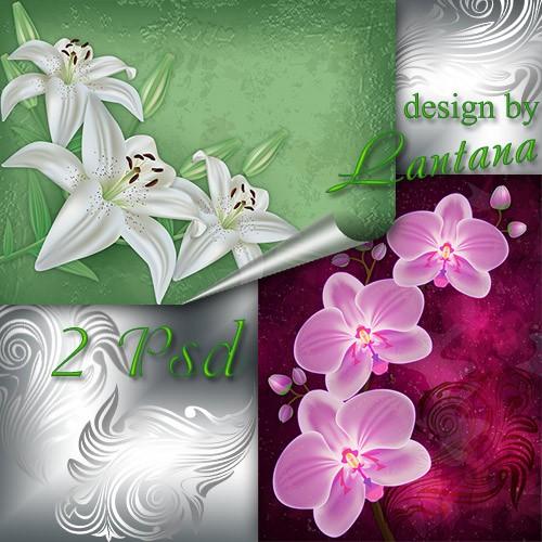PSD исходники - Нежные лилии, орхидеи, будто сказочные феи