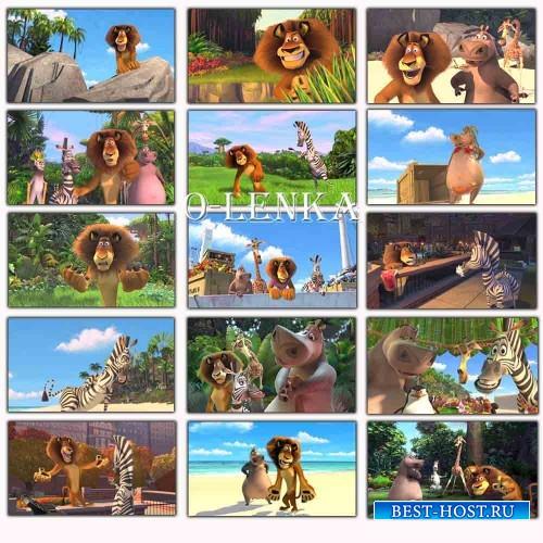 Детские фоны из мультфильма - Мадагаскар