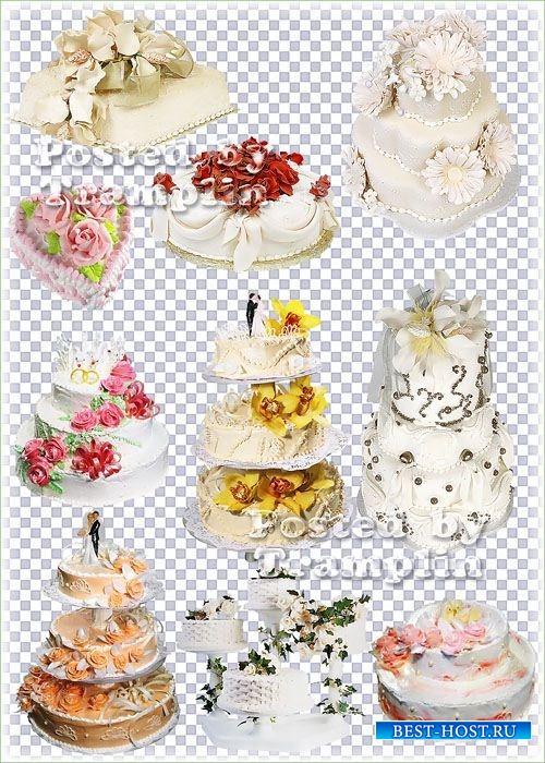 Торты свадебные  - Клипарт -  Прозрачный фон