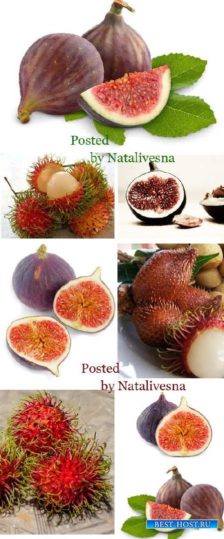 Инжир и Рамбутан / Fig and Rambutan - Stock photo