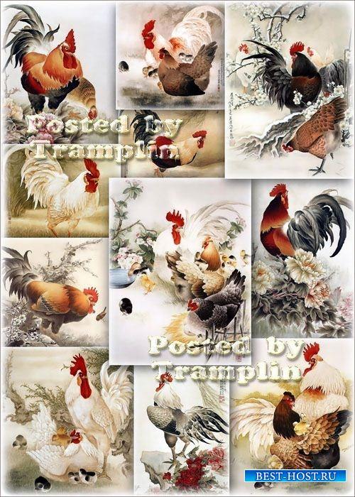 Китайская живопись – Петухи, куры, цыплята