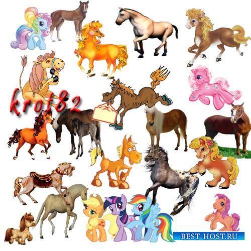 Клипарт – Лошади и пони, символ 2014 года