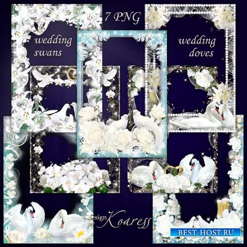 Набор свадебных фоторамок - Белые лебеди, нежные голуби