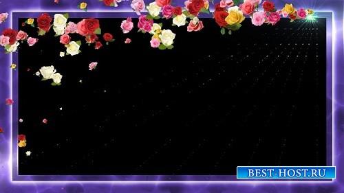 HD футаж Рамка из цветов