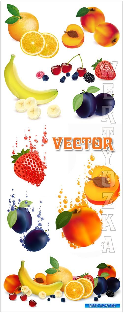 Фрукты в векторе, абрикос, банан, слива, клубника / Fruits vector, apricot, banana, plum, strawberry
