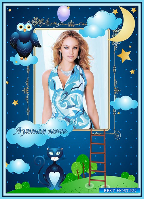 Фотошоп рамка лунная ночь с совой и котом