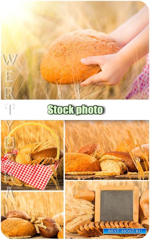 Хлеб, пшеничное поле, колоски / Bread, wheat field, spikelets - Raster clipart
