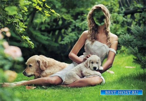 Шаблон psd женский - Девушка на поляне с двумя лабрадорами