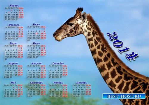 Настенный календарь 2014 года - Жираф