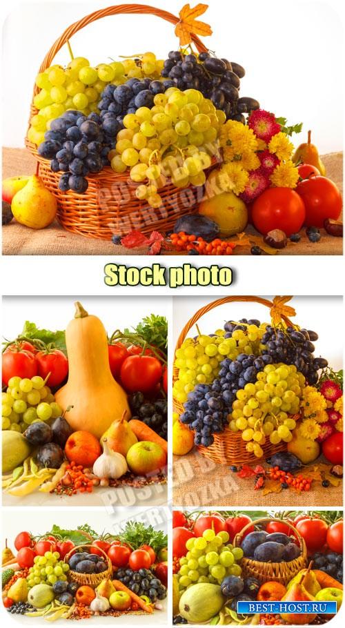 Осенние композиции, фрукты и овощи в корзине / Autumn composition - Raster clipart