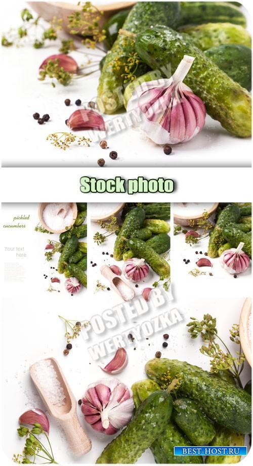 Маринованные огурцы, чеснок, укроп / Pickled cucumbers, garlic, dill - Raster clipart