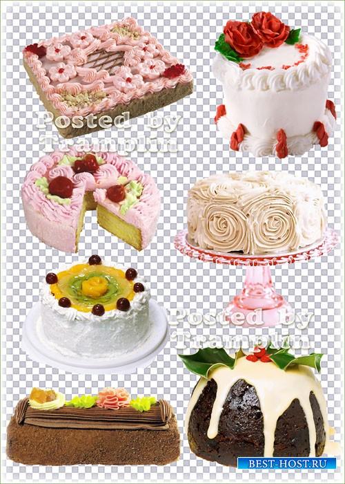 Клипарт на прозрачном фоне – Торты, рулеты, пирожные