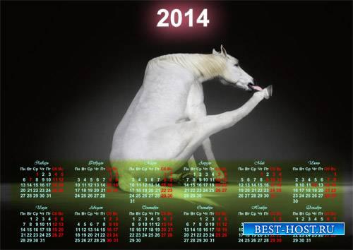 Красивый календарь - Белая смешная лошадка