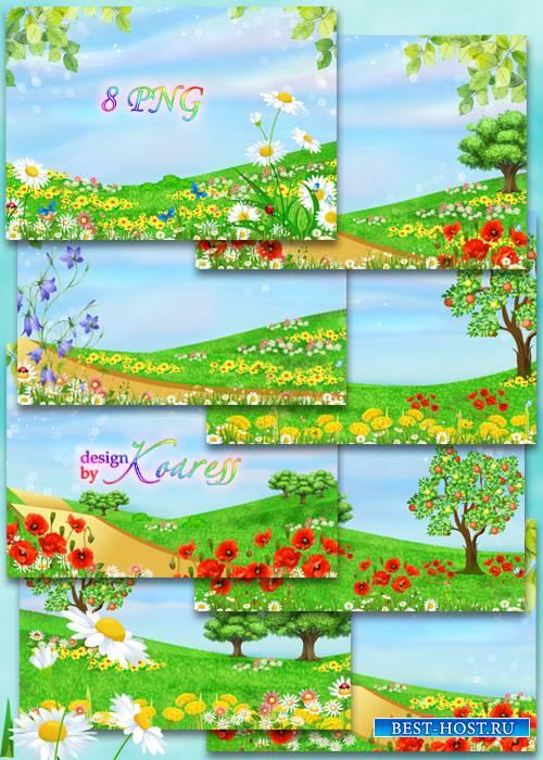 Летние детские фоны с полевыми цветами