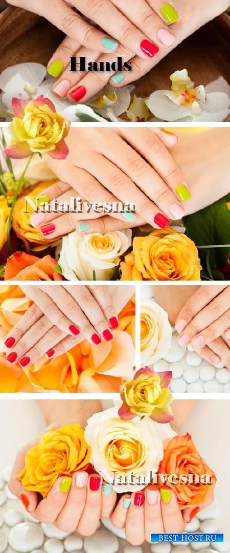 Фоны – Красивые руки  с розами