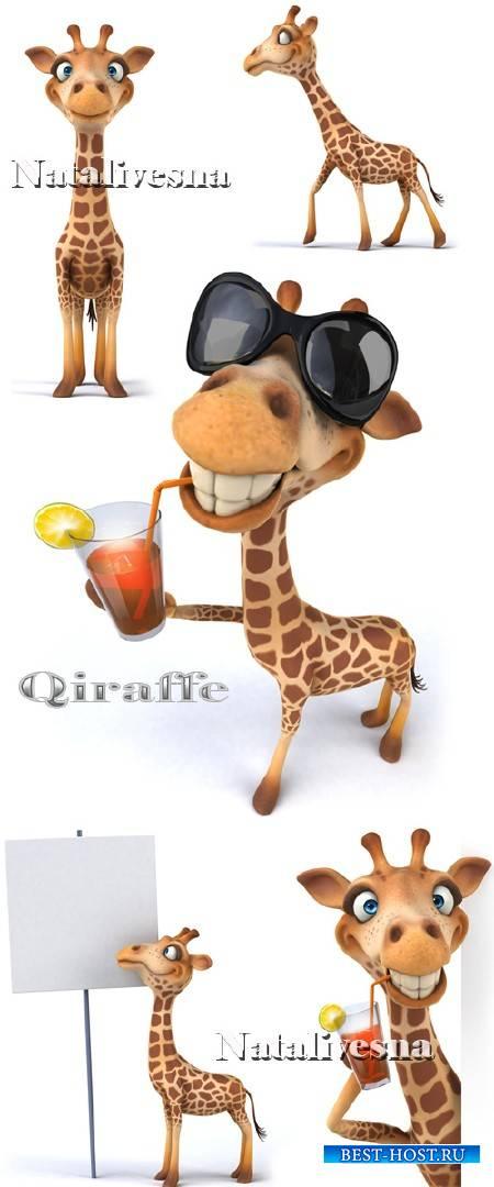 Забавный жираф на белом фоне / Giraffe - Stock photo