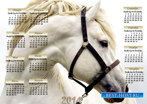 Календарь 2014 - Нежная лошадь
