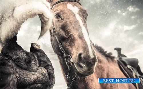Зимняя прогулка с лошадью - женский шаблон