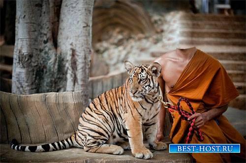Шаблон для Photoshop - Домашний тигр