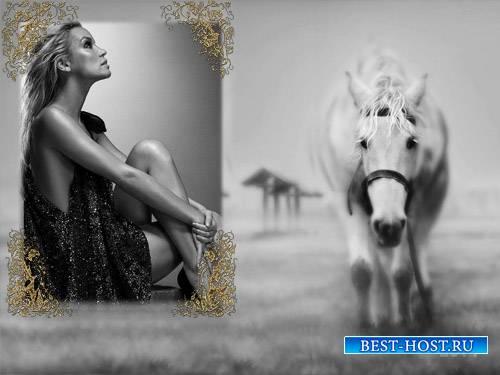 Рамка для фотошоп - Лошадка в черно-белом стиле