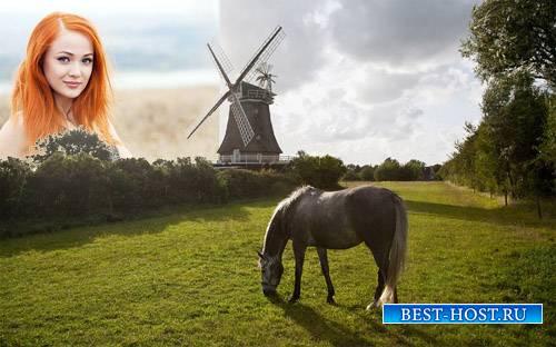 Рамка для фотомонтажа - На красивой поляне пасется лошадь возле мельницы