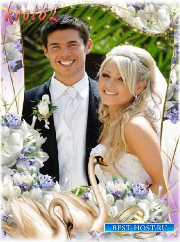 Свадебная рамка для фотошопа с лебедями и обручальными кольцами