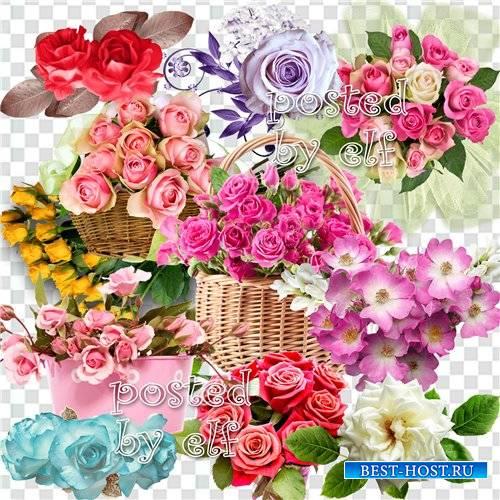 Клипарт без фона - Как хороши, как свежи были розы