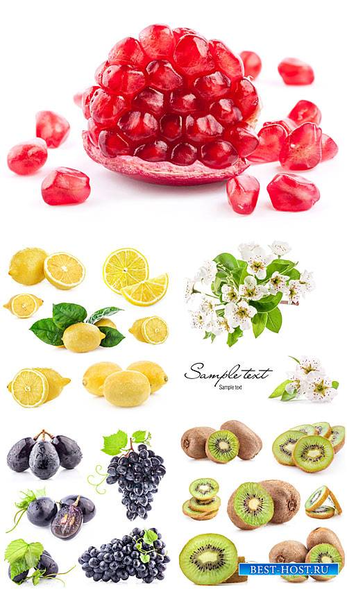 Виноград, гранат, киви, лимон - сток фото