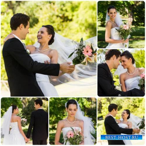 Свадебный сток фото, жених и невеста / Stock photo wedding, the bride and g ...