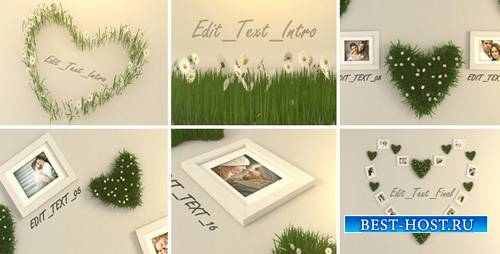 Valentine Photo 6711968 - Project for After Effects (Videohive)