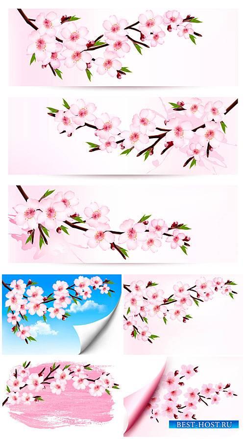 Весенние розовые цветы в векторе, цветущее дерево / Spring pink flowers
