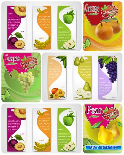 Фрукты, векторные фоны и баннеры с фруктами / Fruits, vector backgrounds and banners with fruits