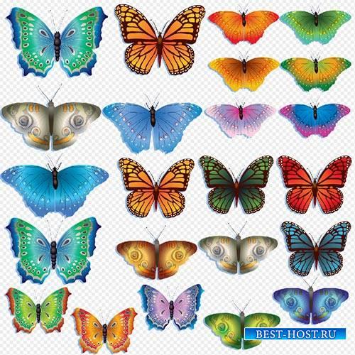 Клипарт- разноцветные красивые бабочки на прозрачном фоне