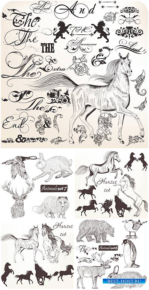 Animals and design elements vector